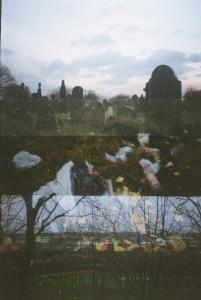 Lomography Photos
